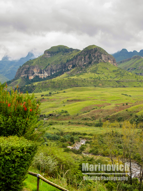 """Cathedral Peak- Drankensberg - Marinovich Wildlife Photography"